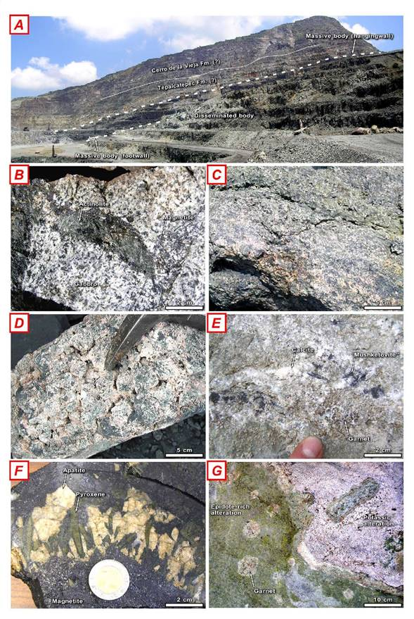 "Figure 3. Selected aspects of the magmatic-hydrothermal iron oxide mineralized areas in the Peña Colorada region, Colima. (A) Landscape view of the main mineralized bodies in the Peña Colorada mine, partially stratabound through volcano-sedimentary rocks of the Tepalcatepec Formation. (B) Sodic alteration (actinolite) accompanying magnetite in veins cutting gabbro in the Arrayanes area. (C) Disseminated magnetite mineralization associated with potassic alteration in the lower disseminated body in Peña Colorada, with potassium feldspar-rich (pink) and ferroan chlorite-rich (green) seams. (D) Potassic alteration in fragments of garnetite engulfed by the massive magnetite body in Peña Colorada (potassium feldspar + chlorite + apatite + magnetite pseudomorphs after garnet). (E) Hematite replaced by magnetite (""mushketovite"") in the La Fundición area. (F) Breccia fragment or ""xenolith"" constituted by magnetite + apatite + pyroxene in magnetite matrix from the lowermost exposed portion of the polymictic breccia in Peña Colorada. (G) Garnetite replaced by epidote-rich (partial replacement) and potassic alteration (complete replacement) assemblages in the La Fundición area. Photos C, D, and F appeared in Tritlla et al. (2003), and are reproduced with permission."